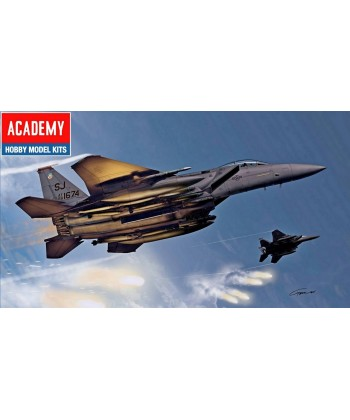 F-15E FIGHTER SQUADRON