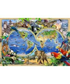 MAPA DEL REINO ANIMAL 150 P